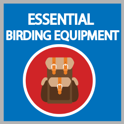 bird watching equipment