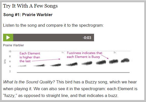 prairie_warbler_song
