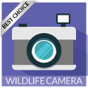 best_wildlife_camera