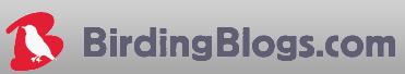 birdingblogs